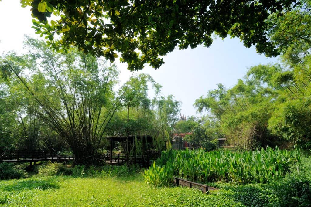 鬧中取靜,小琉球碧雲寺竹林生態池 bamboo forest ecological pool in liuqiu of pingtung 13 1024x682