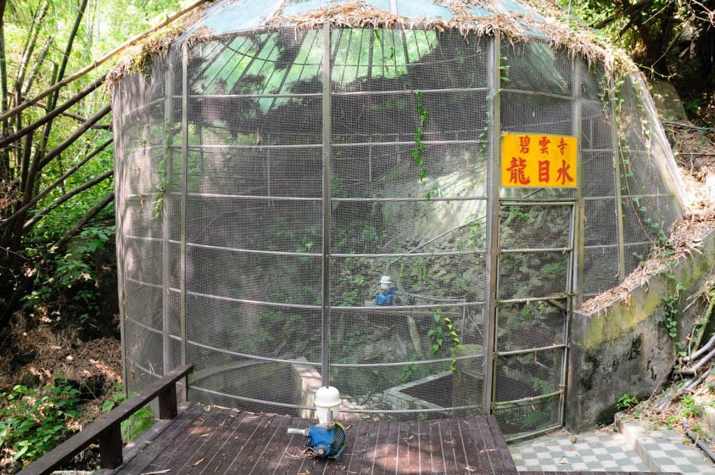 鬧中取靜,小琉球碧雲寺竹林生態池 bamboo forest ecological pool in liuqiu of pingtung 14 1024x680